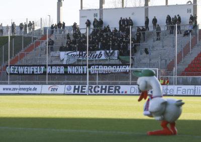 FSV Zwickau - Preußen Münster